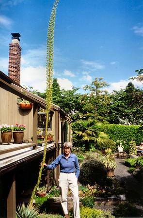 Bob Dunn's Vancouver Garden