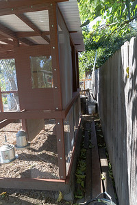 The back of the coop is separate from the fence with room to walk behind, but there is no access from this side.