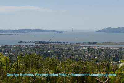 The view is mostly trees, then the lower part of Berkeley and the San Francisco Bay.
