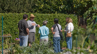Showing visitors around the Garden.