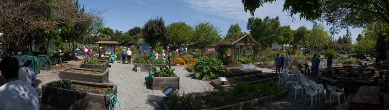 This is an overall view of the entry area of the garden including high-raised beds, kiosk, growing circle, and BBQ/dining area