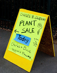 This year's plant sale was mentioned in the Sunnyvale Sun in addition to having signs placed around the neighborhood.
