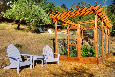 The pergola was built from rough cut redwood 4x4s, 2x4s, and 2x2s.
