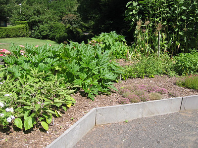 Garden Visits/Tours