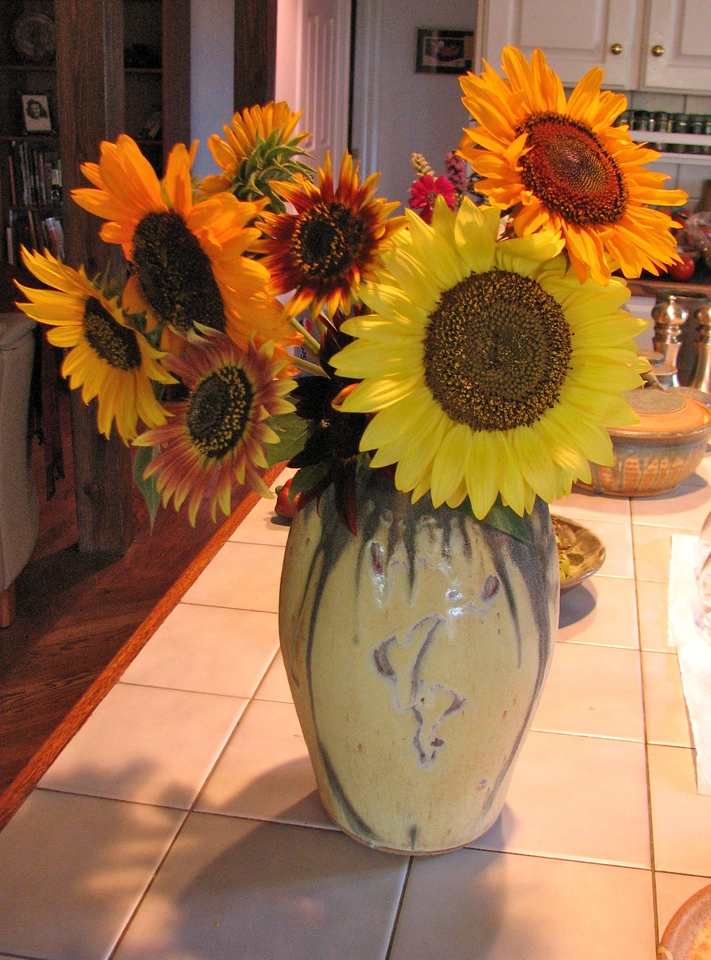The sunflowers Beth displays