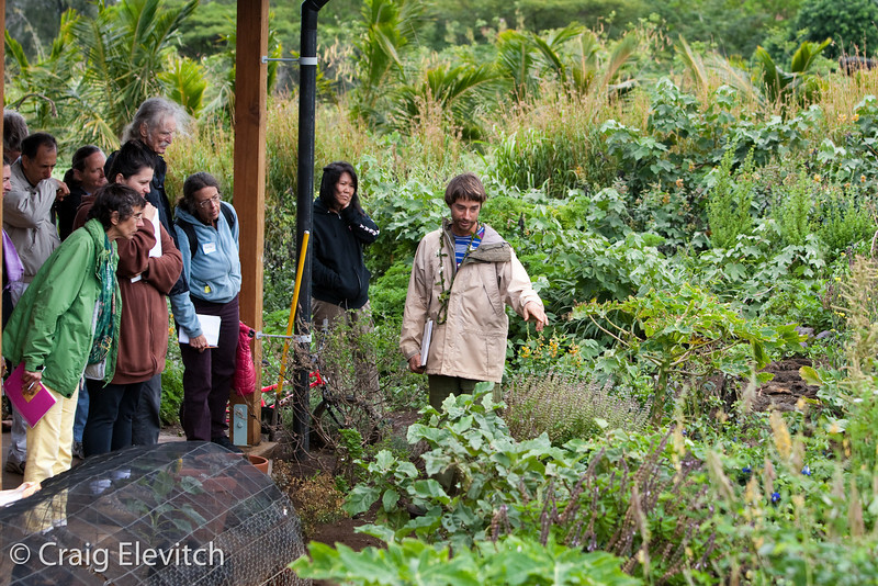 Tom Baldwin shows the diverse edible garden planted around the house at Uluwehi Farm.