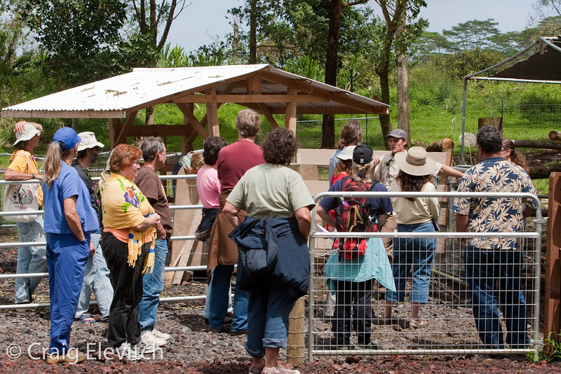 At Milk & Honey Farm, Britton Price presented their poultry and livestock systems.