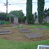 12.13.08 A lot of work... Used my Mantis tiller to remove the lawn, at least attempted to. As you can see there is more to do. As I was finishing up for the day it began to rain. Today is Wednesday, 12.17.08 and it has rained almost every day since. Only in SoCal would you start a project like this in late November-being a little nuts helps too! Stay tuned!