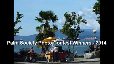 Palm Society Photo Contest - 2014