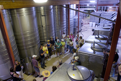 The fermenting room