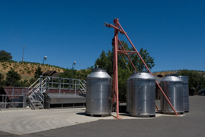 The grape dumping station, start of the winemaking process.