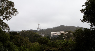 It was an overcast day, with Sutro Tower poking into the overhanging clouds.