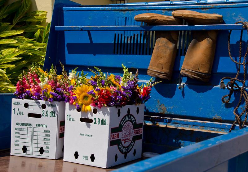 Bermuda Flowers BLS8685