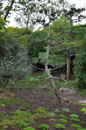 Japanese Garden of Contemplation Hamilton Gardens Hamilton New Zealand - 4 Nov 2006