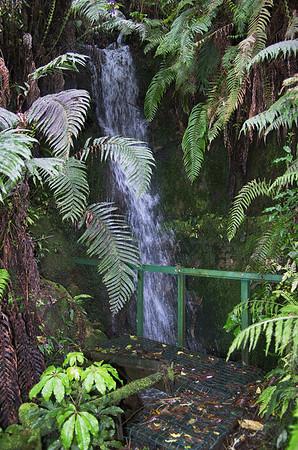 Hopkirk's Gardens Taranaki New Zealand - 30 Oct 2006