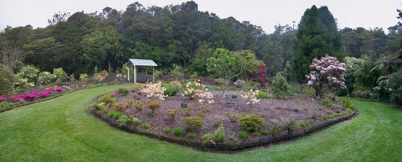 Upper gardens Pukeiti Taranaki New Zealand - 27 Oct 2006