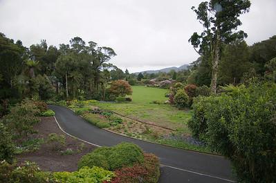 Pukeiti Taranaki New Zealand - 27 Oct 2006