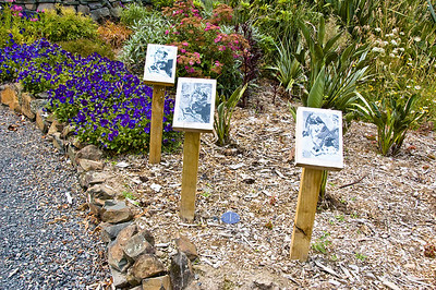 1 Xin Cheng Signs Wood, nails, adhesive ans laminated photos