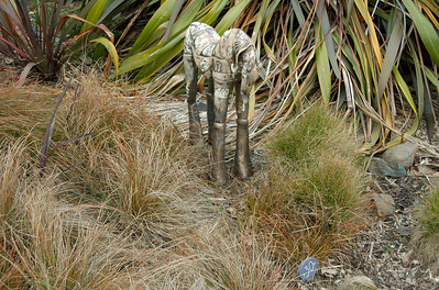 Lily horse Fiona Tunnicliffe - Clay Sculpture-in-the-Park 2006 Waitakaruru Arboretum Hamilton  New Zealand - 3 Nov 2006