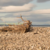 The beach at the mouth of the river spey Moray Firth