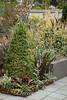 Linda Hannan's Garden_723