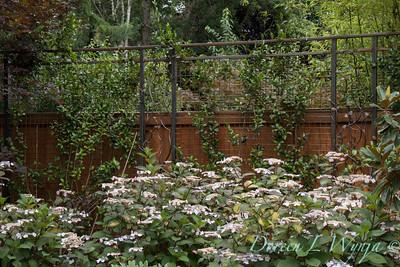 David West - Meyer garden_110