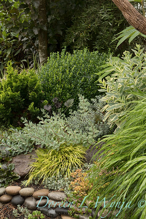 Marcia Peck - Marcia's garden_617
