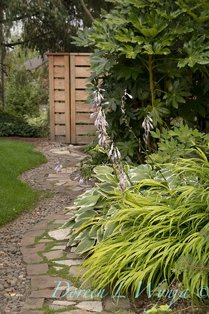 Marcia Peck - Marcia's garden_619