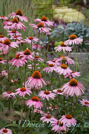 Hegna Garden_158