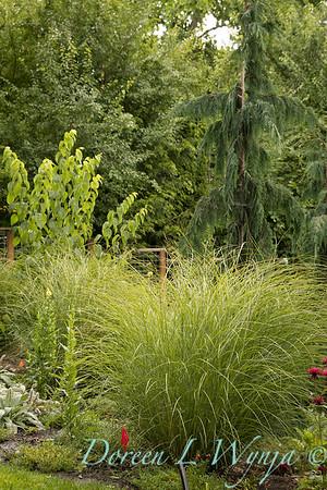 Lucy & Susan - Letson garden_717