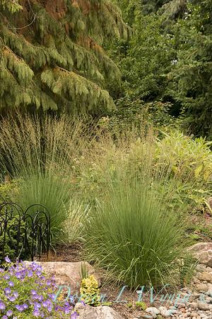 Lucy & Susan - Letson garden_703