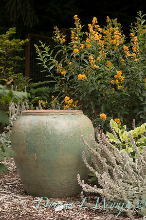 Lucy & Susan - Letson garden_723