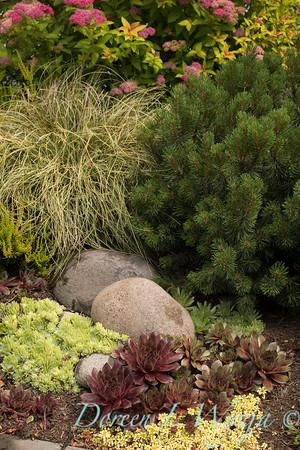Marcia Peck - Schmitt garden_515