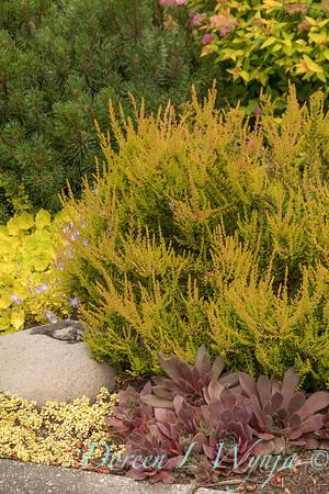 Marcia Peck - Schmitt garden_514
