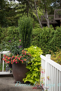 Perennial Partners design_631