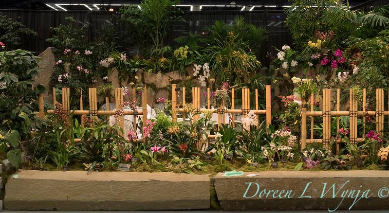 Northwest Orchid Society_1110