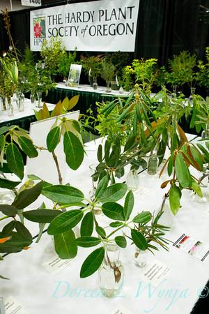 Hardy Plants_0914