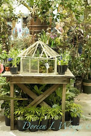 Christianson's Nursery_5163