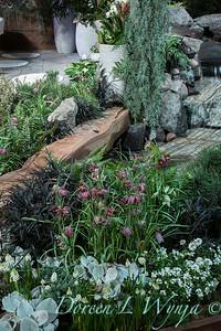 West Seattle Nursery - Devonshire Landscaping_7053