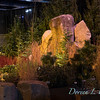 Avid Landscapig Design & Development_7097