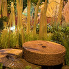Avid Landscapig Design & Development_7096