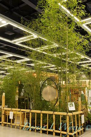 Bamboo Garden_8558