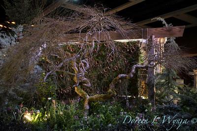 West Seattle Nursery - Devonshire Landscaping_7036