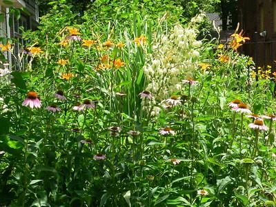 2012 Dezelan Garden