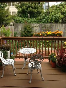 Naples garden from porch
