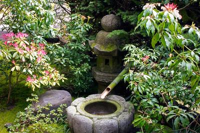 Water bowl & lantern