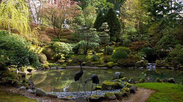 Pond & storks