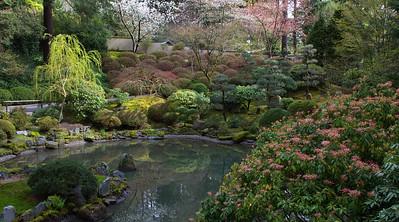 J. Garden pond AM