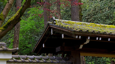 Japanese Garden roof detail