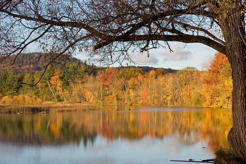 REFLECTIONS OF FALL COLOURS NEAR BURLINGTON, VERMONT
